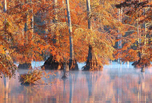 Noxubee Wildlife Refuge