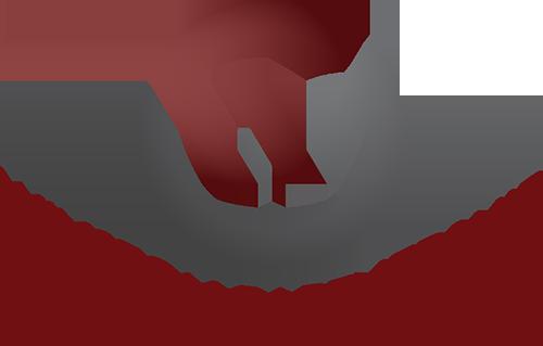 Winston County Economic Development District Partnership